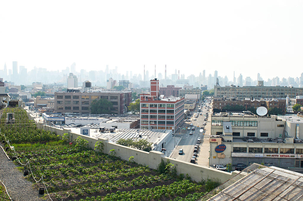 Brooklyn Grange rooftop farm, Queens. Potensialet for å gjøre bruk at byens tak er åpenbart.  Foto: Are Carlsen