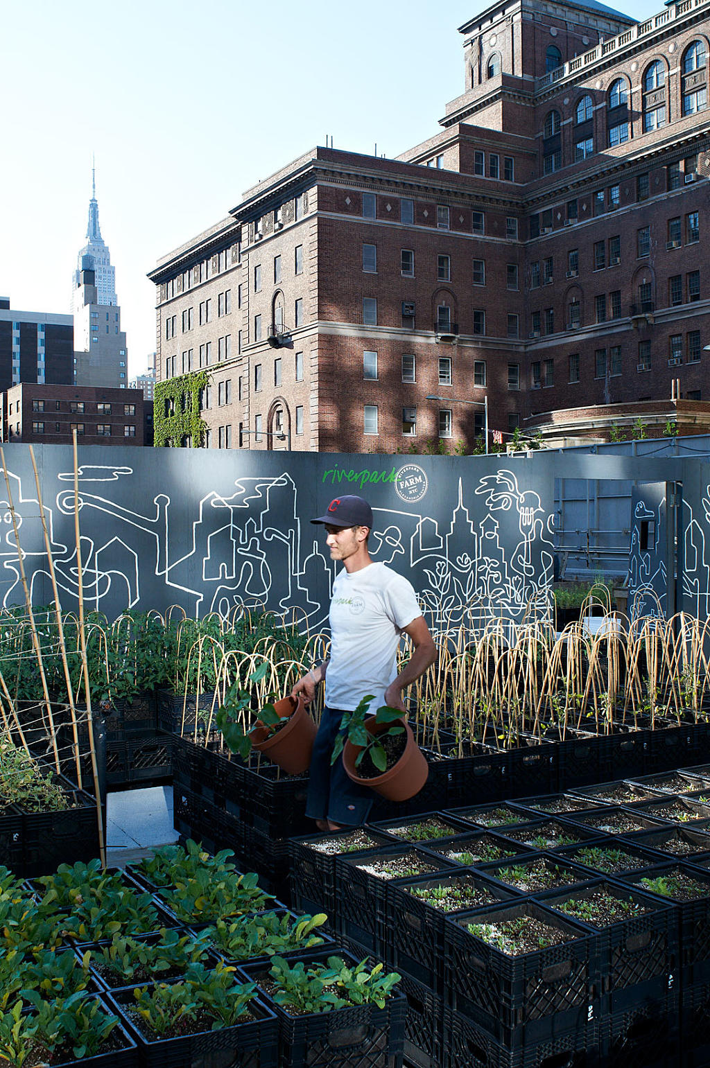 Riverpark Farm, East 29th Street, Manhattan. Gartneriet drives av to fast ansatte urban farmers. Foto: Are Carlsen