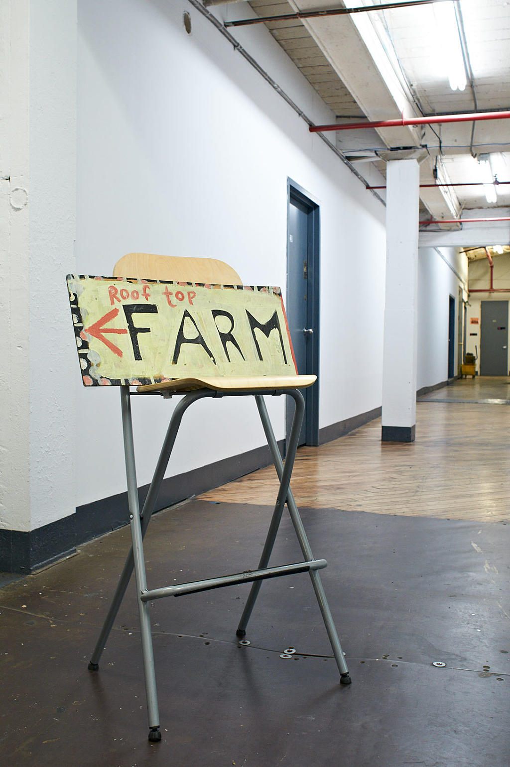 Fra Eagle Street Rooftop Farm, Greenpoint, Brooklyn.  Foto: Are Carlsen